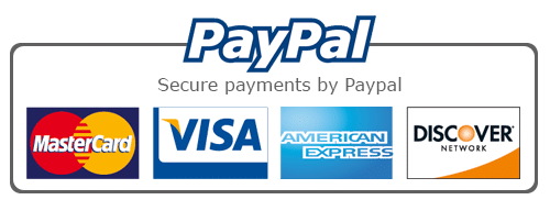 pagamenti visto d'ingresso in India